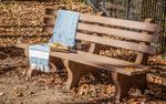 Finch Poly 6' Park Bench