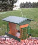 Amish Poly Deluxe Bird Feeder with Suet Cages