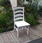 Poly Ladder Back Dining Chair