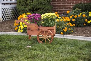 Amish-Crafted Decorative Peddler's Cart