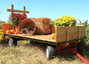 Amish Made Compact Farm Wagon