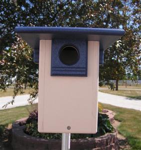 Poly Bluebird House