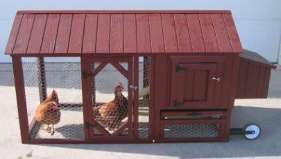 Amish Atlanta Urban Chicken Coop Kit