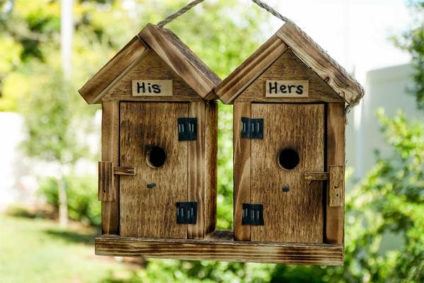 Amish His-And-Hers Outhouse Bird House