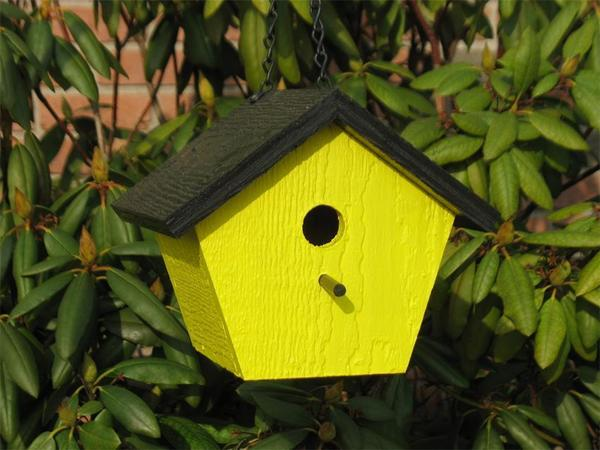 Amish Shapz Pentagon Garden Bird House