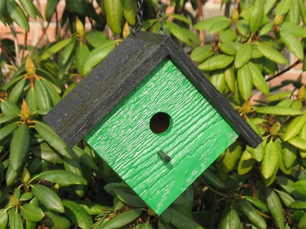 Amish Diamond Modern Bird House
