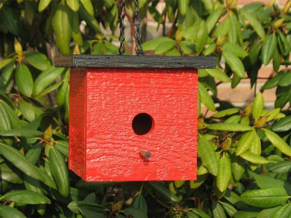 Amish Modern Square Bird House
