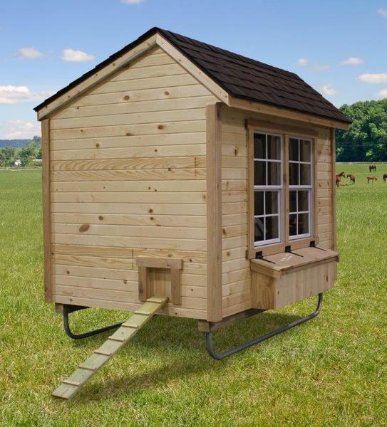Urban Backyard Chicken Coop 5' x 8'