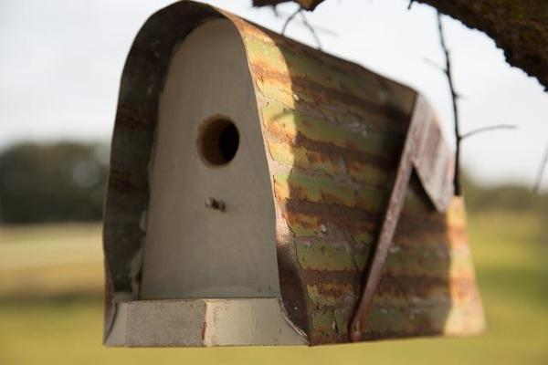 Amish Rustic Mailbox-Style Bird House