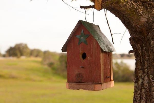 Amish Rustic Traditionalist Bird House