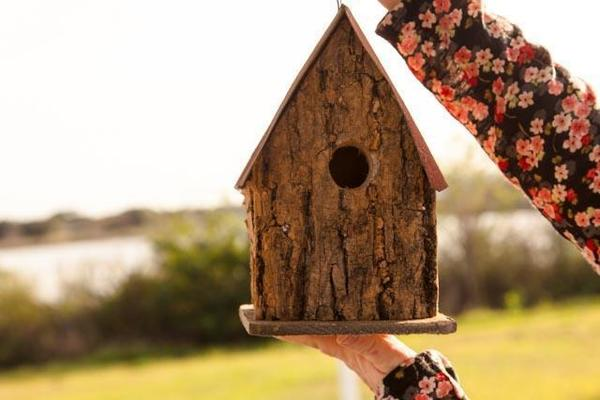 Rustic Bark Wood Wren Bird House