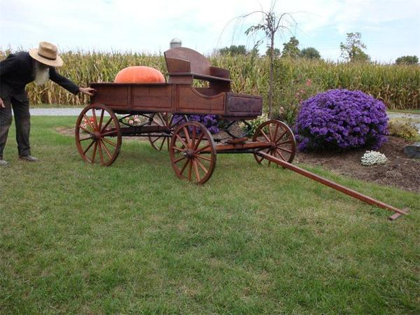 Amish Old Fashioned Buckboard Wagon - Jumbo Rustic